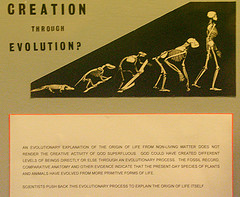 Creationism, Maltese style