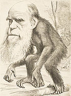 Satirical image of Charles Darwin as an ape