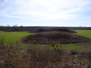 Platform mounds at the Kincaid Site in Massac Co., Ill.